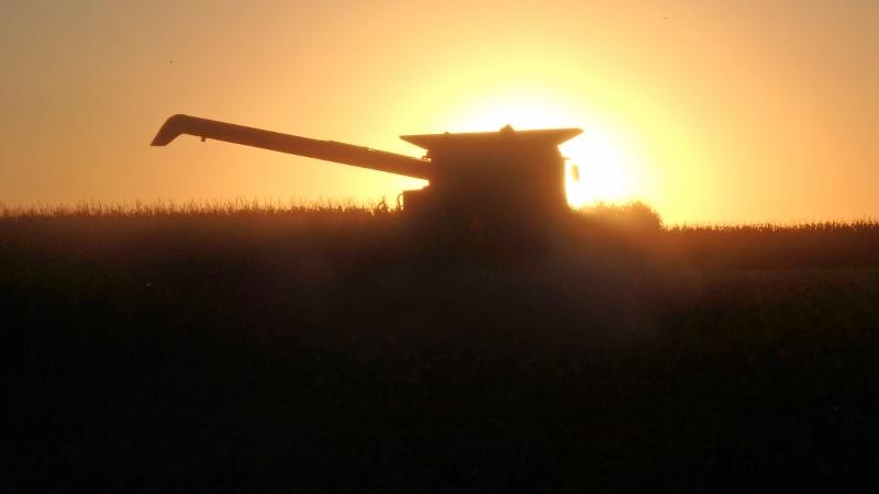 Corn Harvest Complete